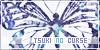 Tsuki no Curse