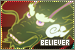 Believer: The Rika Fire Fanlisting Collective